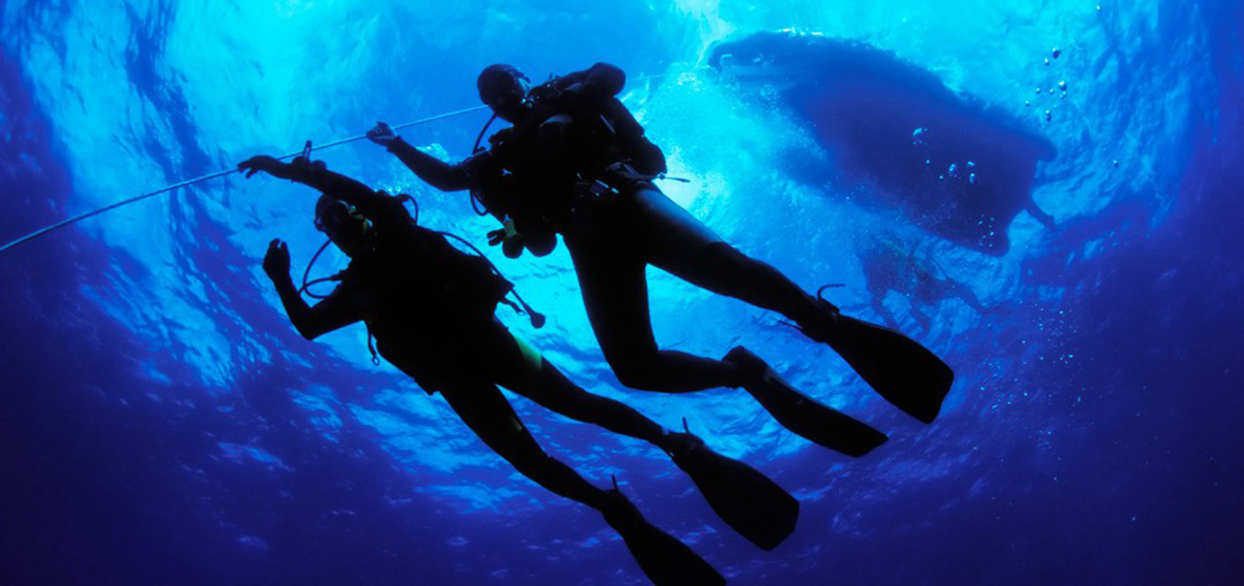 Guide to the best diving sites for diving in Sardinia.